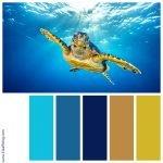Kleurenpalet met diepblauw en okergeel