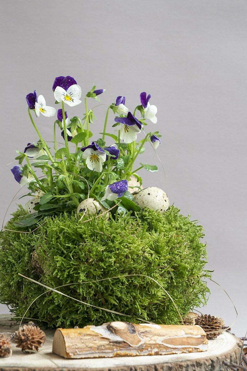 Paasdecoratie met mos en violen