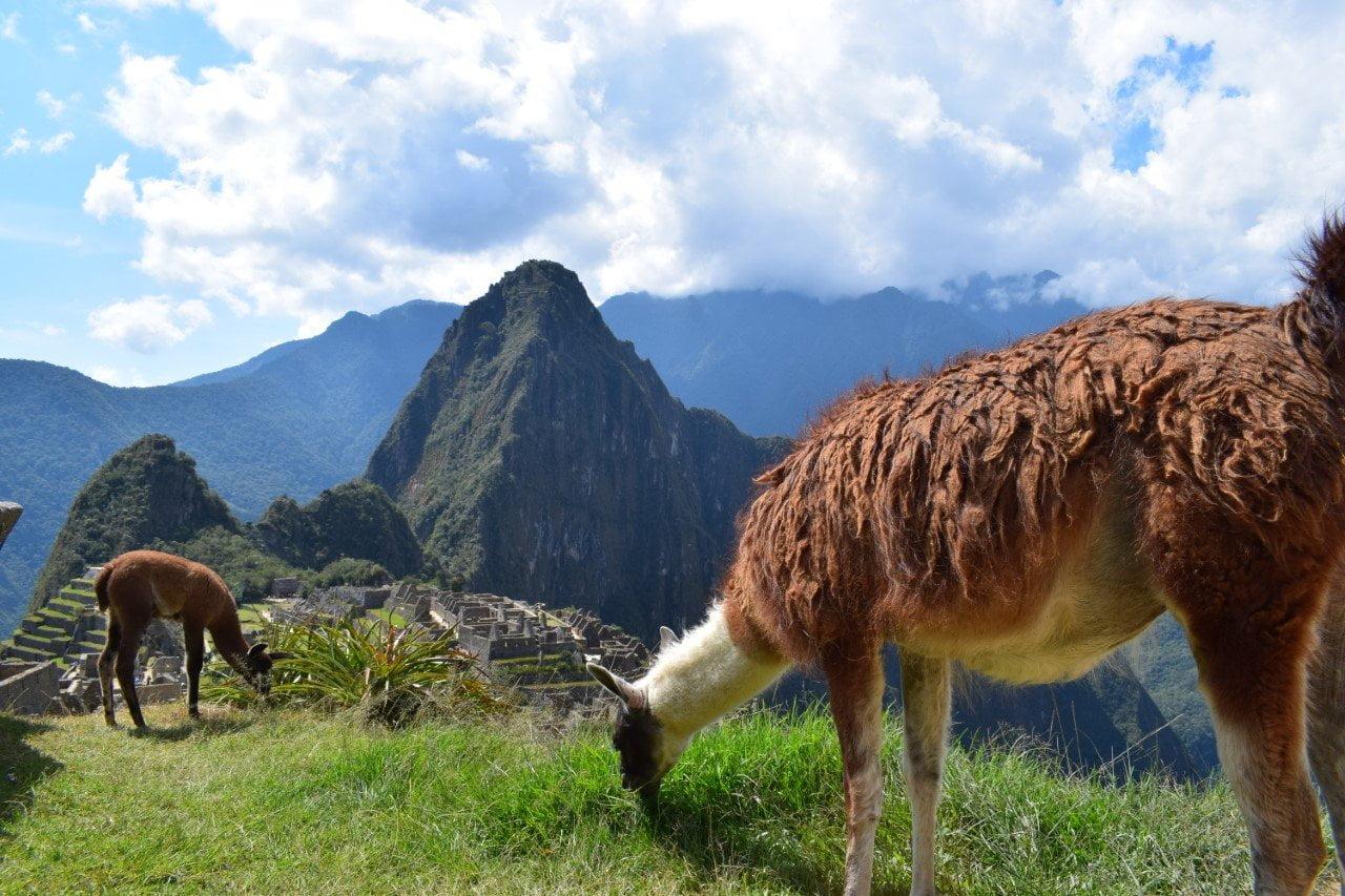 Peru foto van Reis je vrij