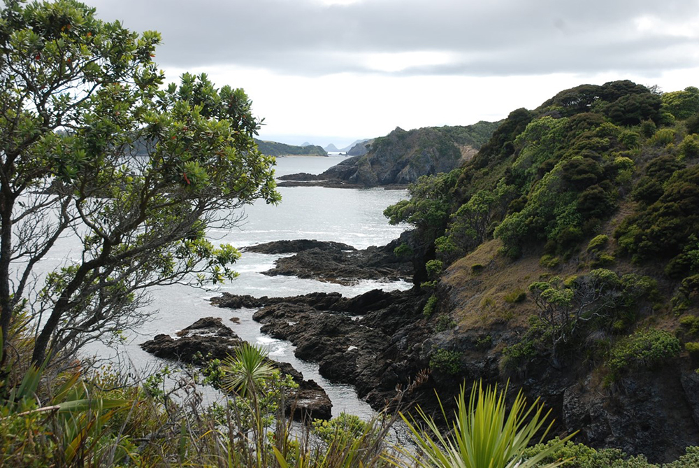 -Motorua Island, onbewoond en zeer afgelegen in de Bay of Islands