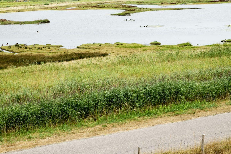Texel: beschermd natuurgebied
