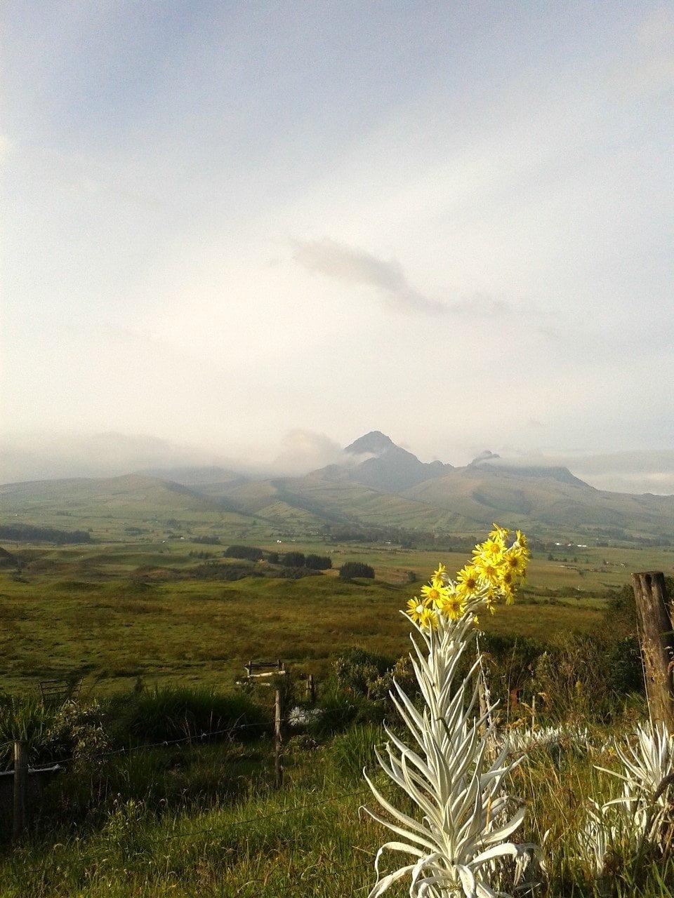 Uitzicht op de Cotopaxi vulkaan in Ecuador