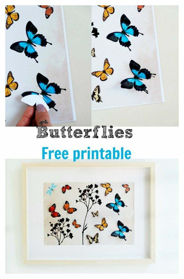 butterflies, Free printable