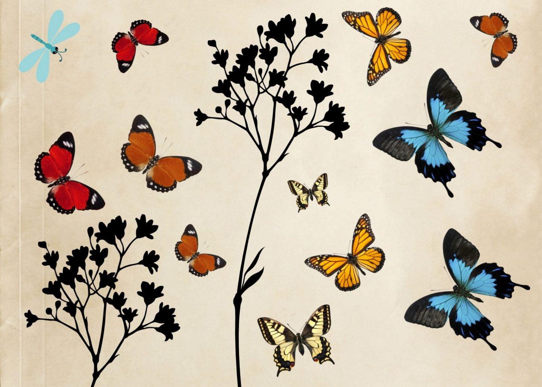 A4 Free Printable vlinders ElsaRblog. free printable