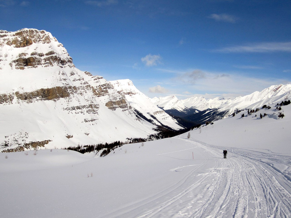Foto van Iris van Mighty Mountains: Canada Winter
