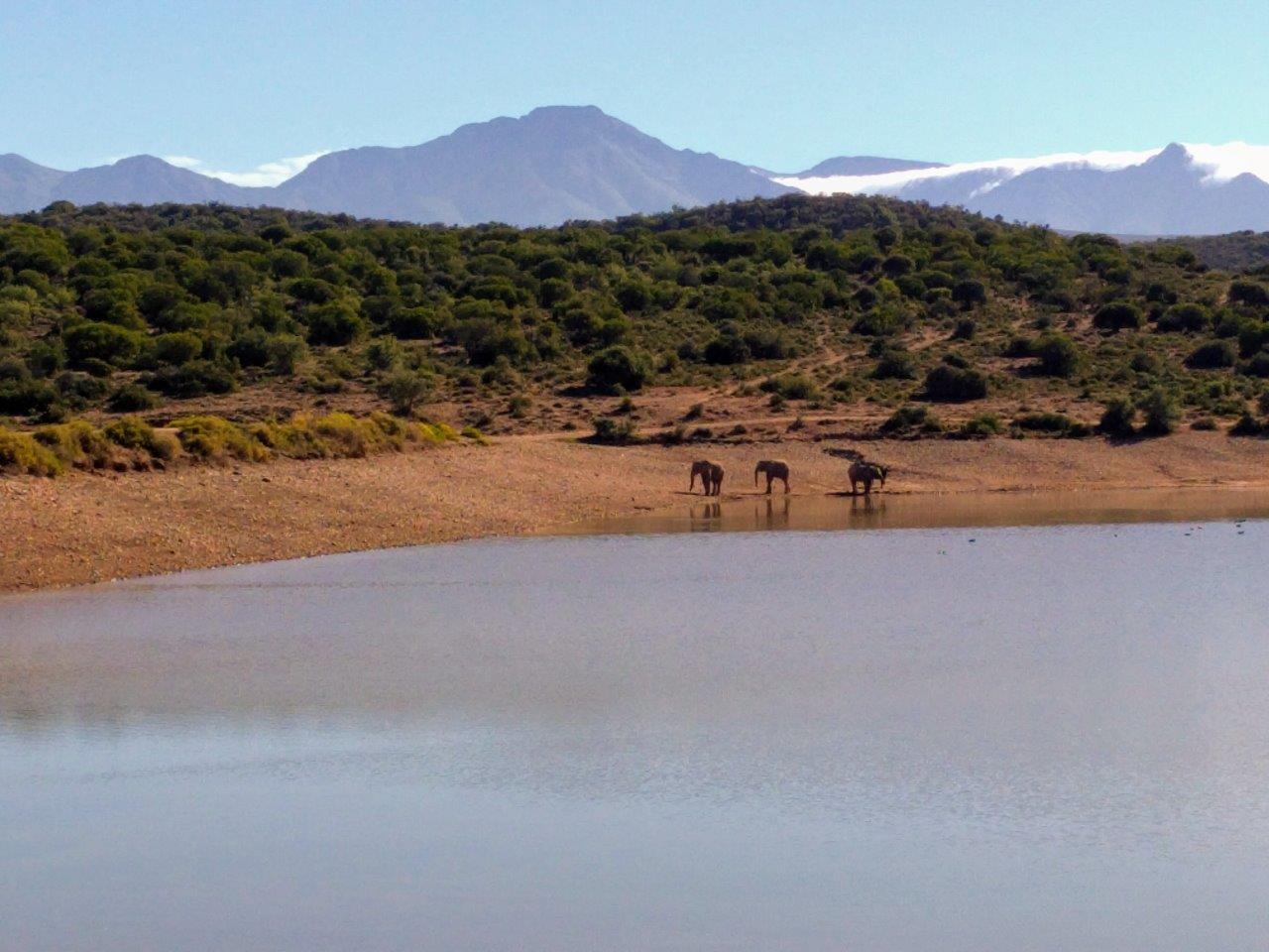 foto van Oysters & Footprints (Zuid-Afrika)
