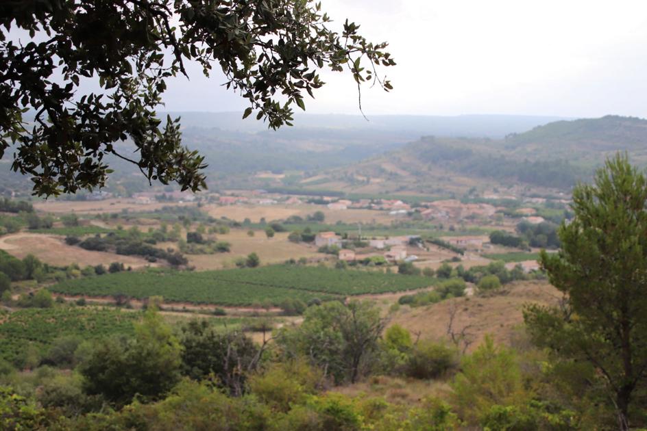 Zuid-Frankrijk gewoonwatgroener