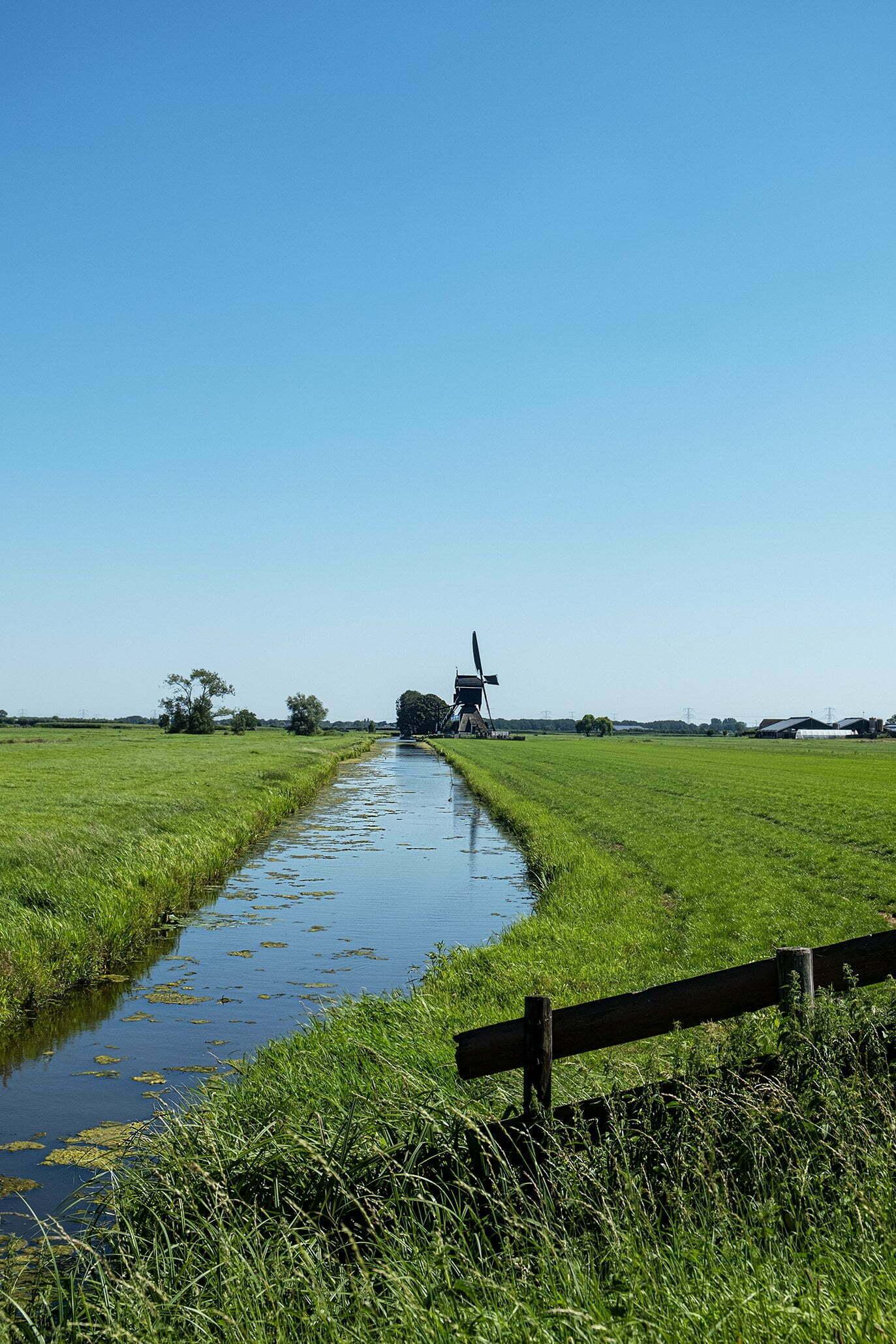 Hollands polderlandschap, de mooie weiden, koeien en paarden, verschillende kerktorens en molens.