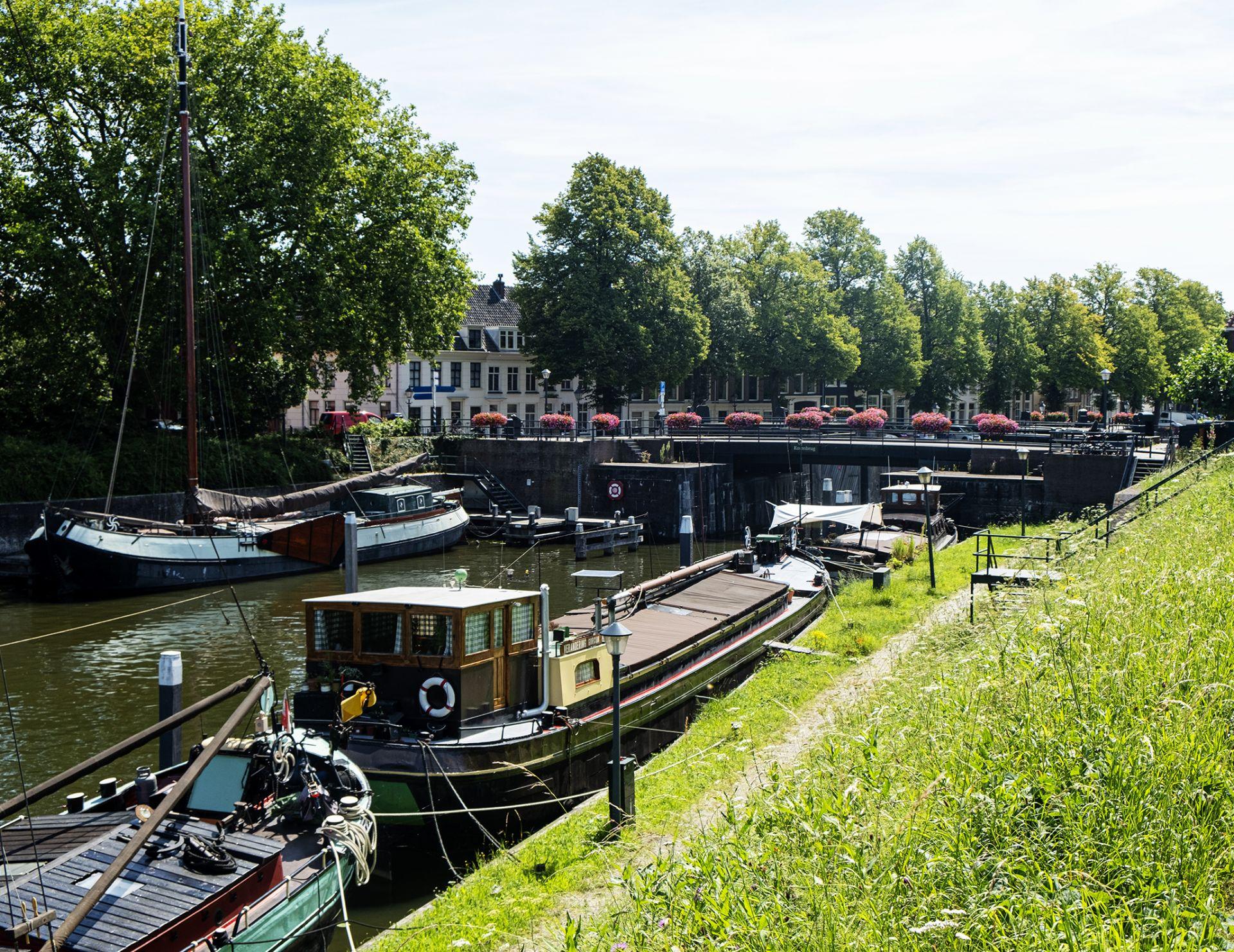 Groene hart van Nederland