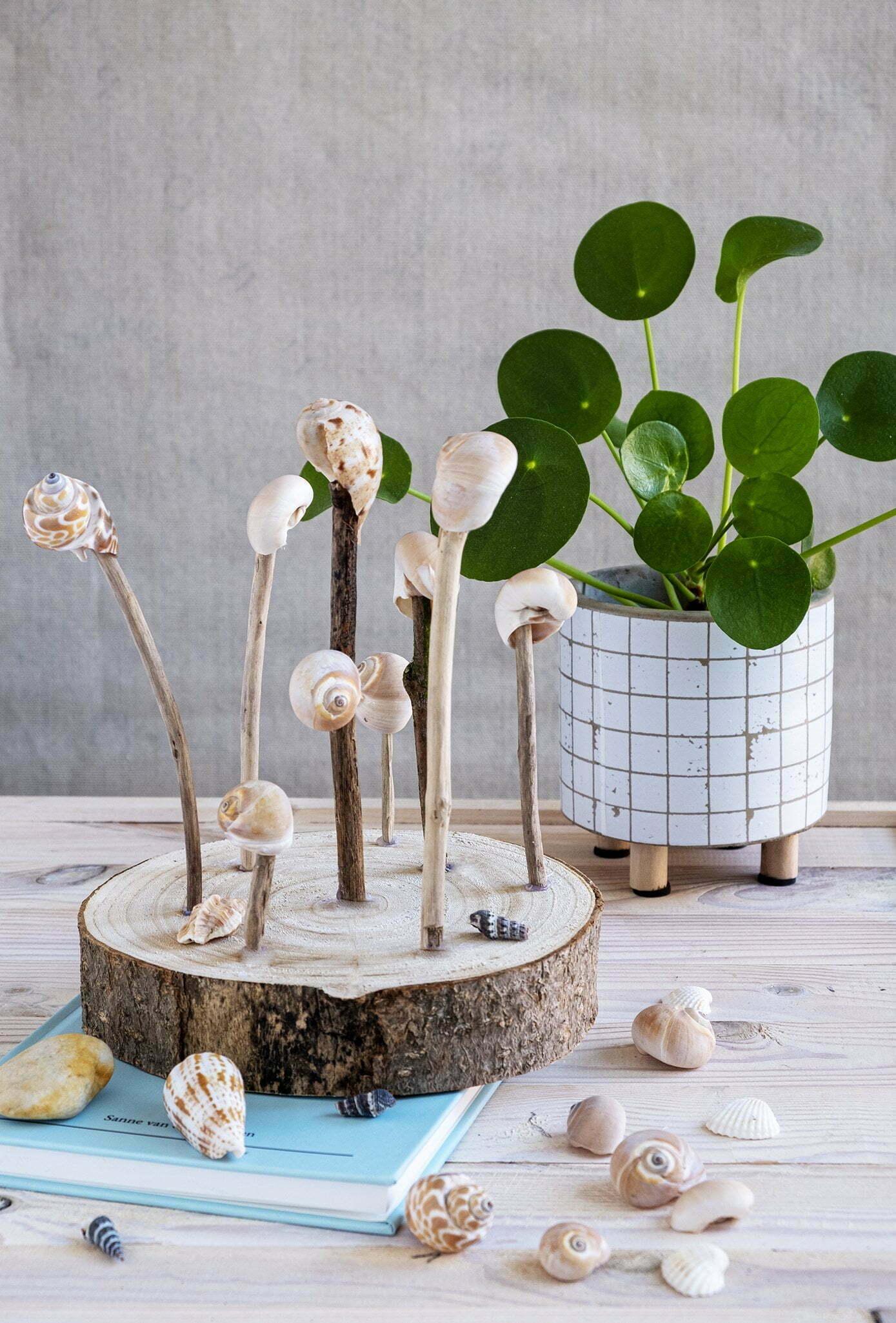 decoratie met schelpjes - Diy