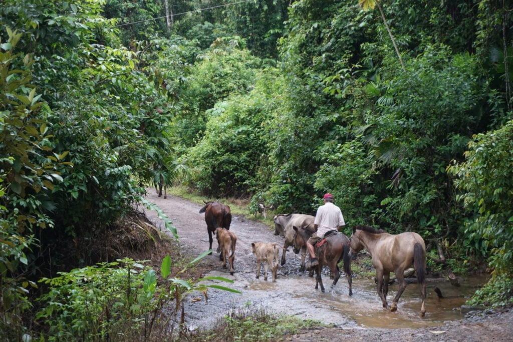 Ik woon mooi: Platteland Costa Rica