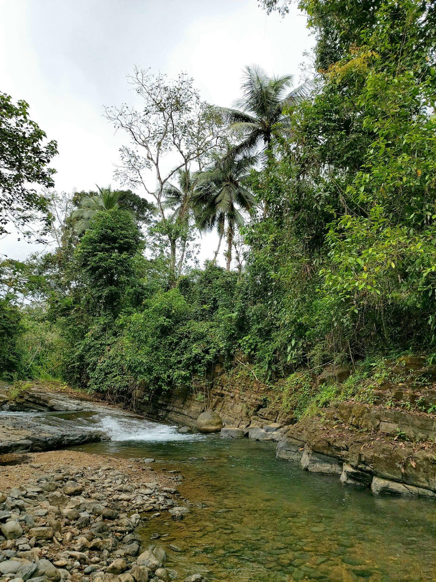Rivier Dos Bocas
