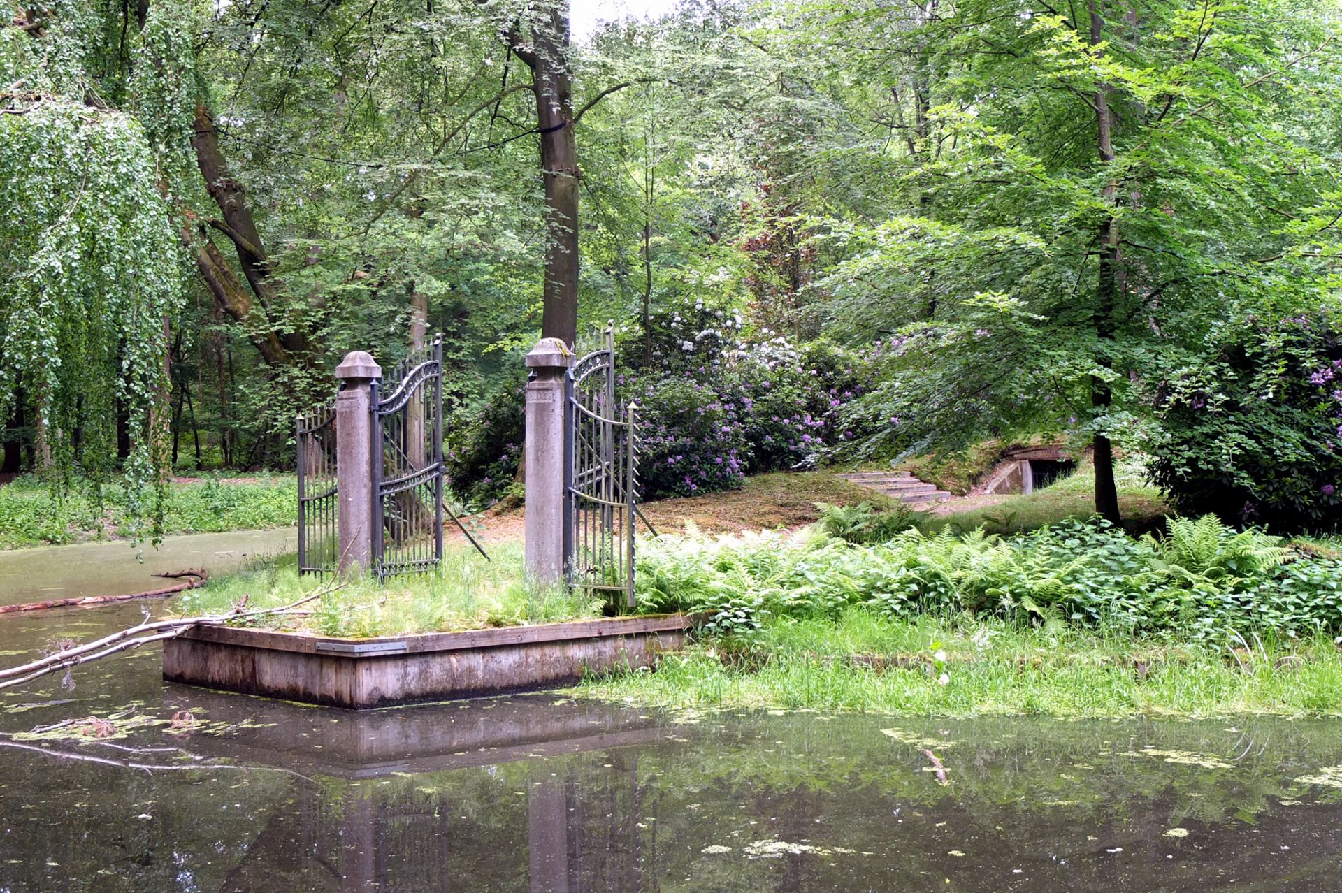 Willie van Knippenberg: Eiland in de Warande