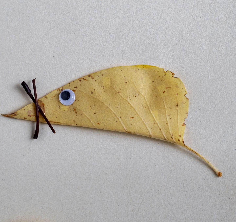 Knutselen met herfstbladeren diy