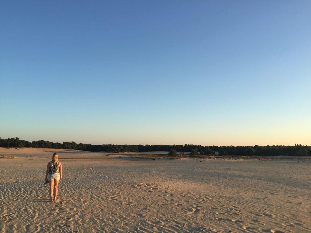 Loonse en Drunense duinen bij Tilburg