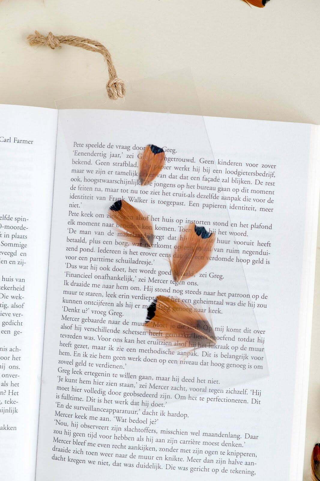 ElsaRblog: diy boekenlegger zelf maken met veren