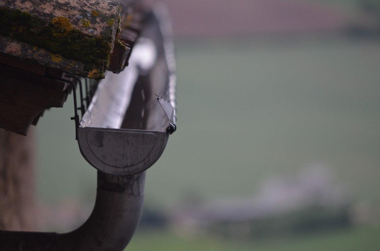 Zo vind je een betrouwbare vakman Van de dakgoot schoonmaken tot een lekkende kraan repareren:
