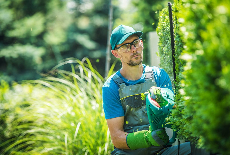 Het belangrijkste gereedschap voor in de tuin
