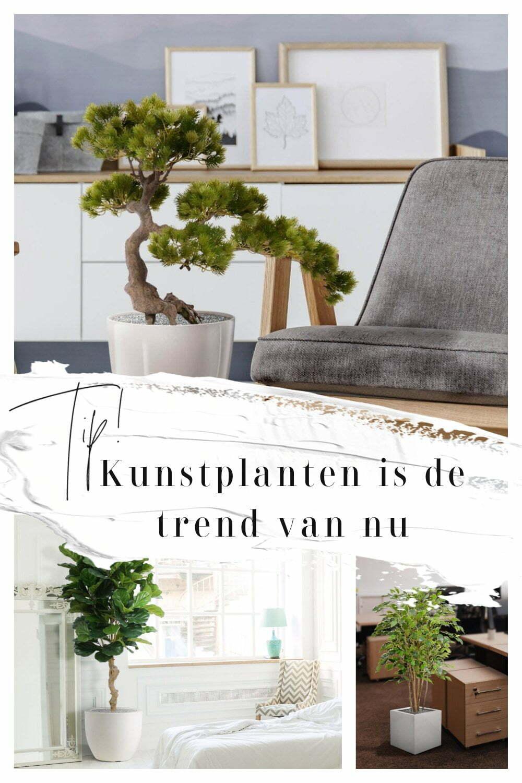 Kunstplanten is de trend van nu