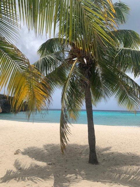 Curaçao (Dushi Korsou)